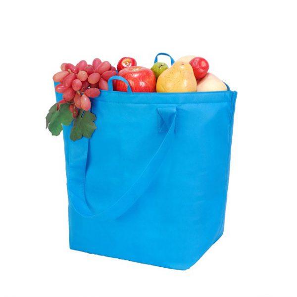 צידנית איביזה 4087 עם פירות