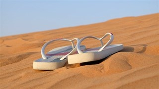 נעלי אצבע ממותגים